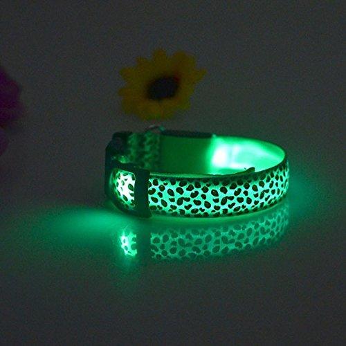 Lights of Germany LED Leuchthalsband Hunde Katzen Halsband Leuchtband Blink 3 Modi Gr. S grün