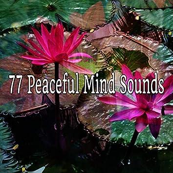 77 Peaceful Mind Sounds