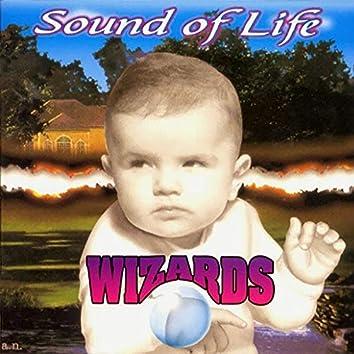 Sound of Life