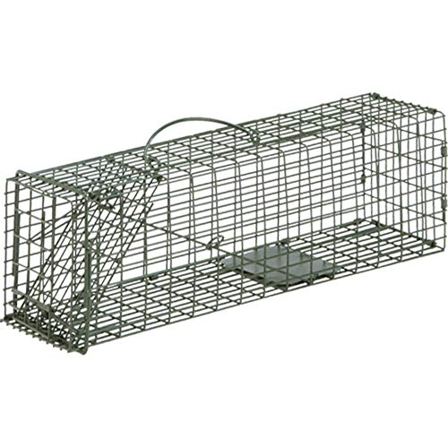 Duke Single Door Cage Trap (16