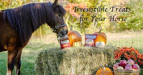 Horse   Mrs. Pastures Horse Cookies (32 Oz), Gym exercise ab workouts - shap2.com