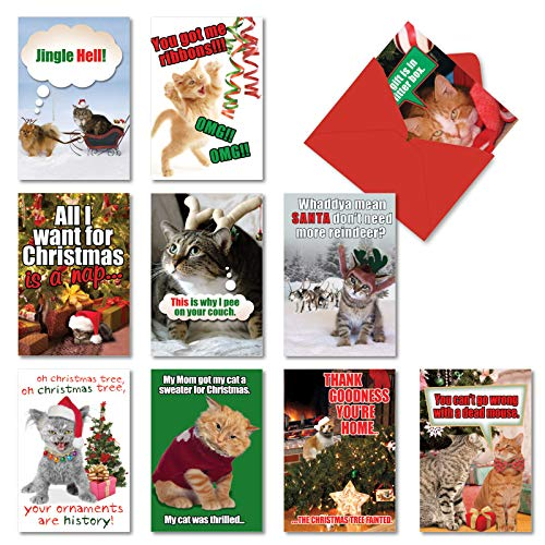NobleWorks - 10 Funny Assorted Christmas Cards Boxed - Happy Holiday Assortment, Notecards with Envelopes - Petigreet Cats A5559XSG-B1x10