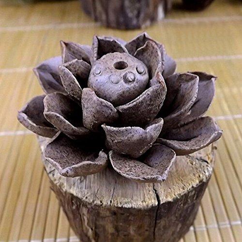 Bazaar Ton Handarbeit Räucherstäbchenhalter aus Keramik Blatt von Lotus Gasbrenner-Packung