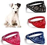OHA-Pet Hundehalstuch mit Halsband - auch für die Katze PINK 23-28 cm Kunstleder