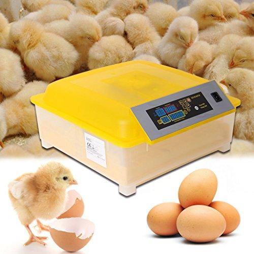 Iglobalbuy Digital 48 Egg Incubator...