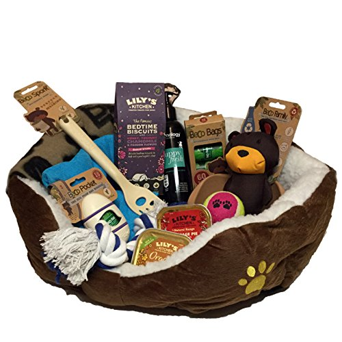 Puppy Hamper Brown - Ideal gift for small dogs birthday or Christmas