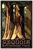 Sequoia National Park Giant Trees Giclee Art Print Poster from Travel Artwork by Artist Paul A. Lanquist 12' x 18'