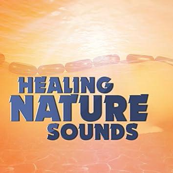 Healing Nature Sounds