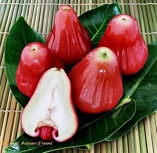 Best java apple fruit Reviews
