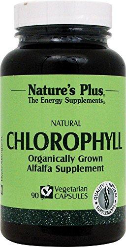 Natures Plus Chlorophyll from organically grown Alfalfa 90 veg. Kapseln (69,5g)
