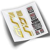 Pegatinas Horquilla ROCKSHOX SID Select 2020 WP359 Cromado Oro
