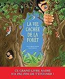 La Vie cachée de la forêt