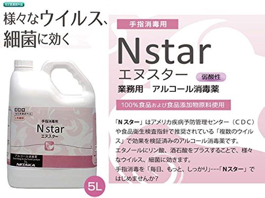 肉屋晩ごはんカラス手指消毒用 業務用アルコール消毒液 ニイタカ Nstar エヌスター 5LX4本