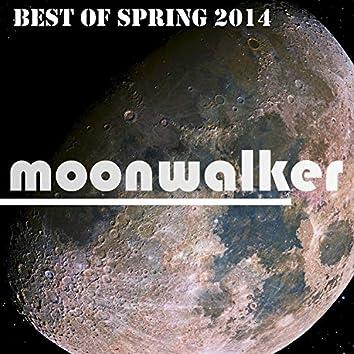 Best Of Spring 2014