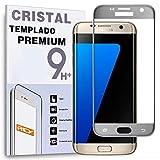 REY Protector de Pantalla Curvo para Samsung Galaxy S6 Edge Plus, Plata, Cristal Vidrio Templado Premium, 3D / 4D / 5D