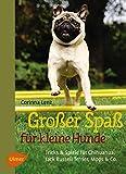 Großer Spaß für kleine Hunde: Tricks & Spiele für Chihuahua, Jack Russell Terrier, Mops & Co.: Tricks & Spiele fr Chihuahua, Jack Russell Terrier, Mops & Co.