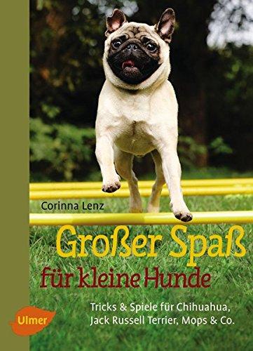 Großer Spaß für kleine Hunde: Tricks & Spiele für Chihuahua, Jack Russell Terrier, Mops & Co.