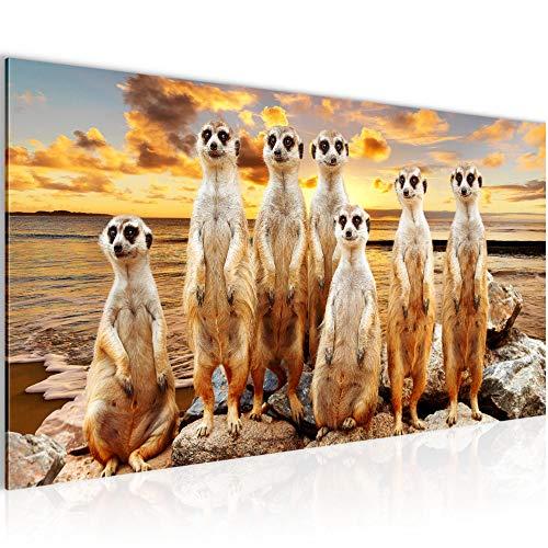 Bilder Afrika Erdmännchen Wandbild Vlies - Leinwand Bild XXL Format Wandbilder Wohnzimmer Wohnung Deko Kunstdrucke Braun 1 Teilig - MADE IN GERMANY - Fertig zum Aufhängen 005512b
