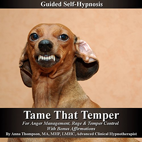 Tame That Temper Guided Self Hypnosis audiobook cover art