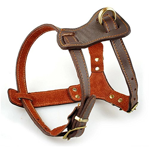 """Beirui Leather Dog Harness - No Escape Training Harness Chest 15.5-18"""" for Small Dogs"""