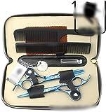 PIAOLING Tijera Peluquería Profesional - 6.0Inch Color de Cabello Tijeras Set, Azul Cereza Profesional de peluquería Herramientas (Color: Azul) Barberos o Uso doméstico (Color : Blue)