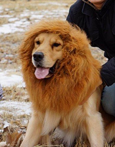 Gran Peluca de Animal Perro Gato Leon Para disfrazes de Hallowen Navidades y otras fiestas con disfraçes Marrón Claro