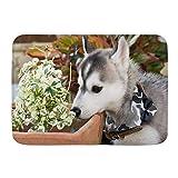 Alfombrillas para puertas, amigo, perro husky siberiano, pla