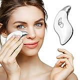 Alicorn Beauty Face Massager Heat, Electric Gua Sha Board, Heat & Vibration Face Massage, Heat Steel Edge Facial Scraper, Boost Collagen Promote Circulation Anti Aging