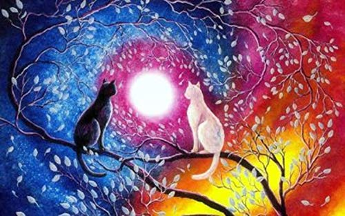 MOL kat wit en zwart op de Ramo Luna Dreamy Color 5D Diamond Painting 45x60cm/18x24in