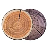HYSEAS Decorative Round Throw Pillows, 14 Inch 3D Digital Print Kids Funny Cute Wood Log Pillow Seating Floor Cushion for Couch, Sofa, Bedroom, Living Room, 1 Stump Pillow and 1 Dark Gray Stump Cover