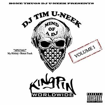 Mind of a DJ, Vol. 1