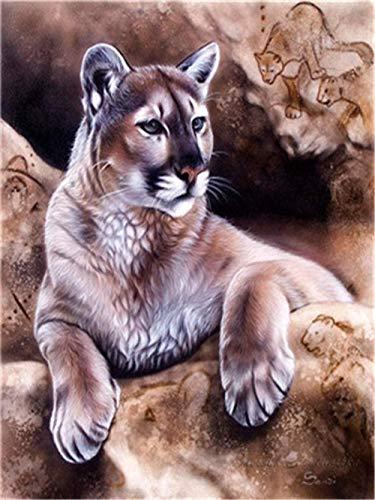 Jkykpp Animal Cat Wall Art Foto Schilderij DIY op nummer sjablonen op canvas, handbeschilderd, olieverfschilderij, decoratie van het huis na nummer 40 x 50 cm