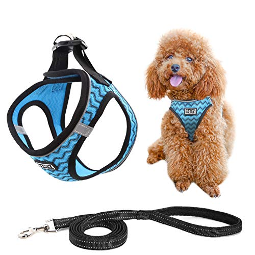 (30% OFF) Puppy Harness and Leash Set $9.79 – Coupon Code