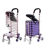 Carretilla con cesta y asiento plegable