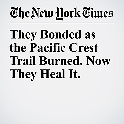 They Bonded as the Pacific Crest Trail Burned. Now They Heal It. copertina