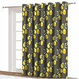 Cortinas opacas de privacidad floral, ramas de limón con pétalos de crecimiento, diseño artístico de la naturaleza, con aislamiento térmico, 305 cm x 244 cm, para dormitorio