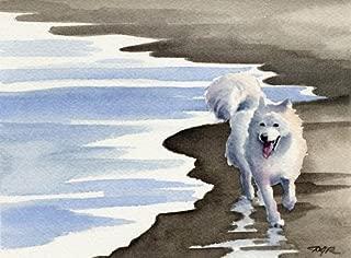 Samoyed Dog Art Print by Artist DJ Rogers
