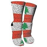 Jesse Tobias Lebanon Flag Puzzle Crazy Socks 3D Crew Socks