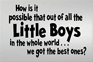 HOW IS IT POSSIBLE THAT OUT OF ALL THE LITTLE BOYS IN THE WHOLE WORLD WE GOT THE BEST ONES KIDS ROOM WALL DECAL VINYL LETTERING WORDS QUOTE HOME DECOR