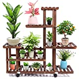 Wood Plant Stand Indoor Outdoor, Wooden Plant Display Multi Tier Flower Shelves Stands, Garden Plant Shelf Rack Holder Organizer in Corner Living Room Balcony Patio Yard (11-13 Flowerpots)