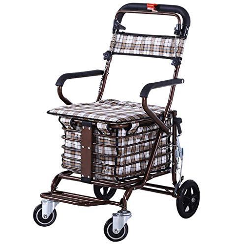 DWW Multifunktionaler Einkaufswagen-Handicap älterer faltender Rollstuhl mit Handläufen und Kissen, doppelter Sicherheitsbremse und Nachlauf, hochklappbarem Pedal, Ablagekorb