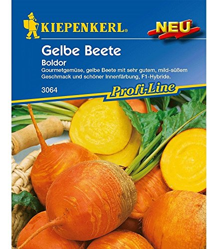 Kiepenkerl Gelbe \'Rote\' Beete Boldor F1,1 Portion