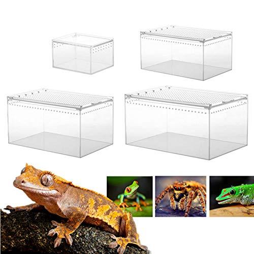 Transparente Reptilienbox Reptilienzuchtbecken Aus Acryl,Reptilien Zuchtbox Reptil Zuchtfall Für Spide, Eidechse, Skorpion, Tausendfüßler, Gehörnter Frosch, Käfer,Mehrfachgröße - 10.3x8.3x6CM