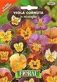 Sementi da fiore di qualità in bustina per uso amatoriale (VIOLA CORNUTA IN MISCUGLIO)
