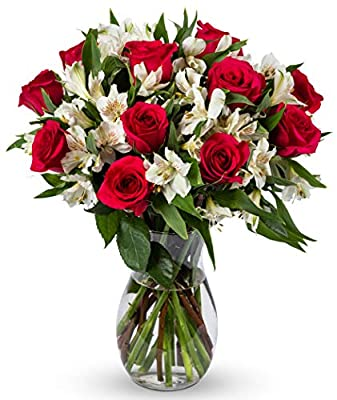 Benchmark Bouquets Signature Roses and Alstroemeria, With Vase (Fresh Cut Flowers) from Benchmark Bouquets