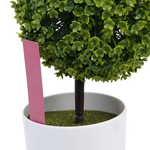 Marqueurs Etiquettes Plante de Pépinière Arbustes Semis Bouture Carte Tag Jardin Kit 100pcs 10*2cm Rose