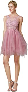 TS Women's A-Line Illusion Neck Mini Lace Over Tulle Beautiful Back Prom Dress with Appliques