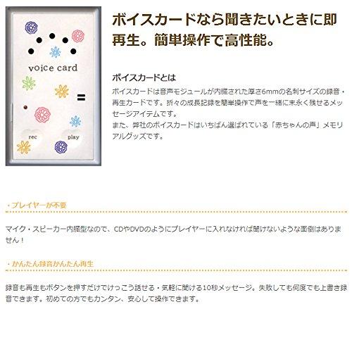 シィ・エス株式会社『育児日記うぶごえアルバムフルリール』