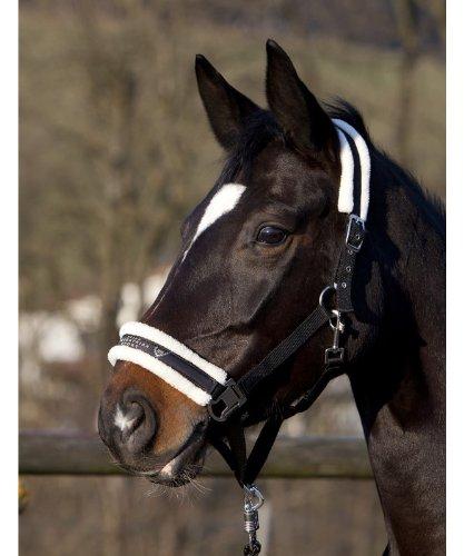 Pfiff 101515 Halfter mit Kunstfell unterlegt, Pferdehalfter Pony Full Cob
