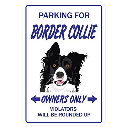 BORDER COLLIE Sign dog dogs groomer breeder pet animal   Indoor/Outdoor   12 Tall Plastic Sign